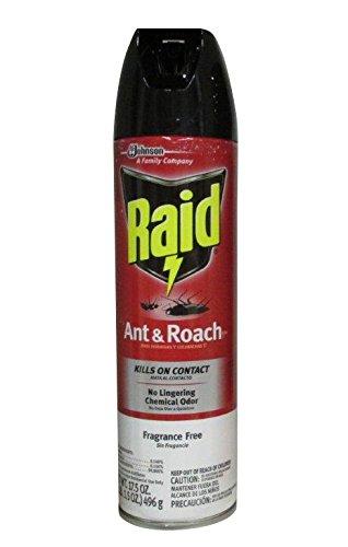Raid (Brand)