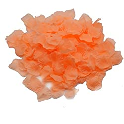 Shenglong Lot 5000 PCS Peach Color Silk Rose Petals Wedding Flower Decoration