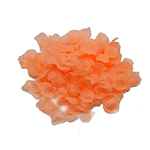 Shenglong Lot 5000 PCS Peach Color Silk Rose Petals Wedding Flower Decoration 6