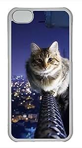 iPhone 5c case, Cute The Cat Upstairs iPhone 5c Cover, iPhone 5c Cases, Hard Clear iPhone 5c Covers