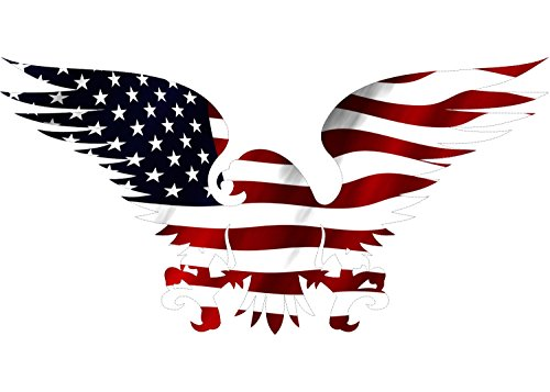 Rogue River Tactical Large 10x6 American Eagle USA Flag Car Decal Window Die Cut Patriotic Auto Bumper Sticker Vinyl Decal for Car Truck RV SUV Boat Support US Military