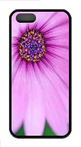 iPhone 5S Customized Unique Purple Osteospermum Flower New Fashion TPU Black iPhone 5/5S Cases - Scenery Flowers