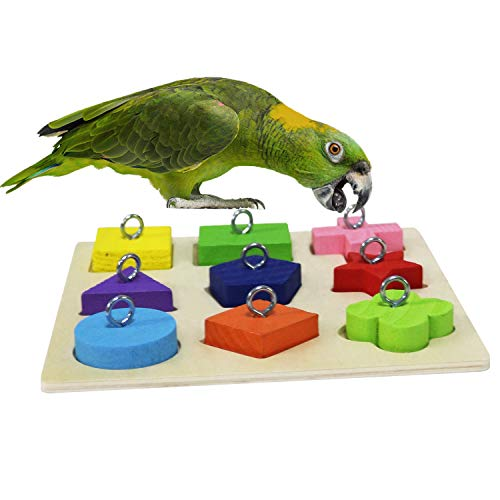 RYPET Bird Intelligence Training Toy – Parrot Educational Toys, Parrot Wooden Block Puzzle Toy for Small and Medium…
