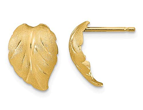 14K Yellow Gold Brushed Leaf Post Earrings