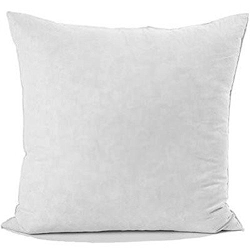 Down Decorative Pillow Forms : 16