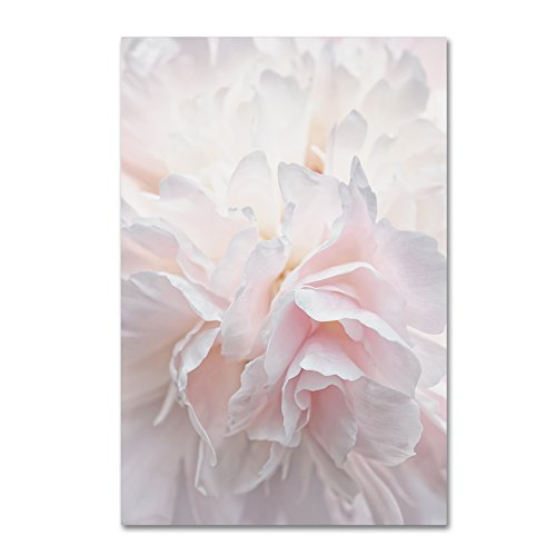 Pink Peony Petals IV by Cora Niele, 30x47-Inch Canvas Wall Art (Petals Peony)