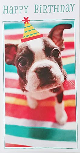 Happy Birthday Greeting Card with Boston Terrier Puppy Dog -