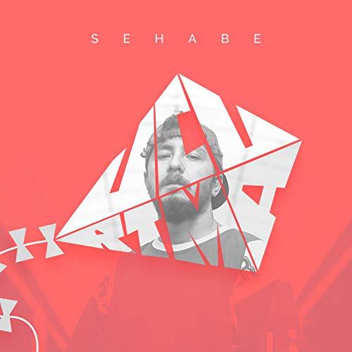 Sehabe-Uçurtma 2018