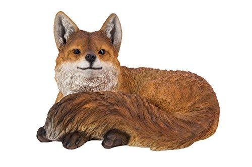 (Fox Laying Down )
