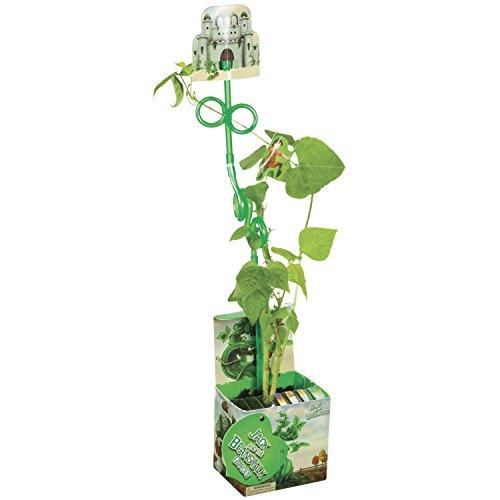 Toysmith Jack Beanstalk Garden Kit