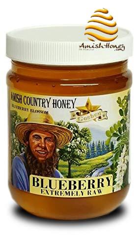 Goshen Honey Amish Extremely Raw BLUEBERRY Blossom Honey 100% Natural Organic Honey Health Benefits Unfiltered OU Kosher Certified | 1 Lb