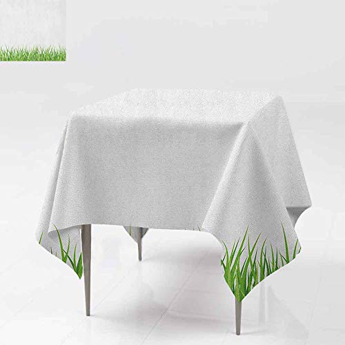 AndyTours Waterproof Table Cover,Green,Fresh Grass Lawn Horizontal Pattern Nature Outdoors Meadow Lush Gardening Theme,Dinner Picnic Table Cloth Home Decoration,54x54 Inch Lime Green White -