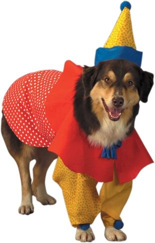Pet Clown Dog Costume For Medium Dogs, My Pet Supplies