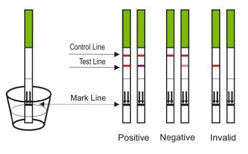 80 x One Step ultra sensitive 20mIU ovulation//fertility tests