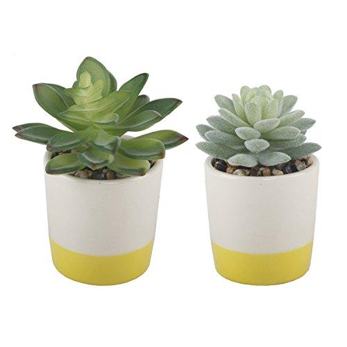 Artificial Pot Yellow (Flora Bunda Set of 2 Faux Succulent in Ceramic Color Block Pot Planter,Yellow/White)