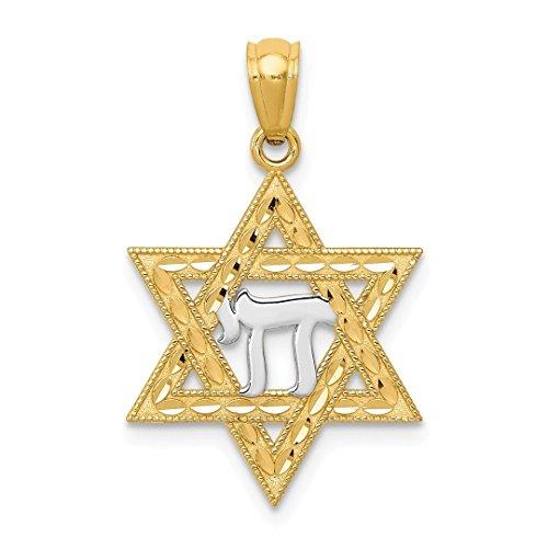 Amazon Black Friday Jewelry Deals 2018-14k Yellow Gold Jewish Jewelry Star Of David Chai Pendant Charm Necklace Religious Fine Jewelry For Women Gift Set - Yellow Gold Large Chai Pendant