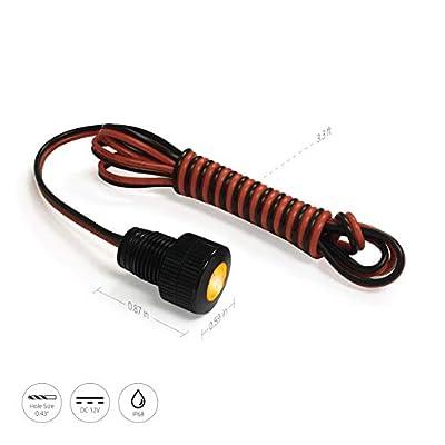 Oznium Brightest Light Bolt - Flush Mount 12V LED Light for Bumper, Grille, Cars Interior, Dash, Ambient Lighting, Motorcycle w/Sleek Aluminum Housing & Screw Nut (11 mm Black, Amber LED): Automotive