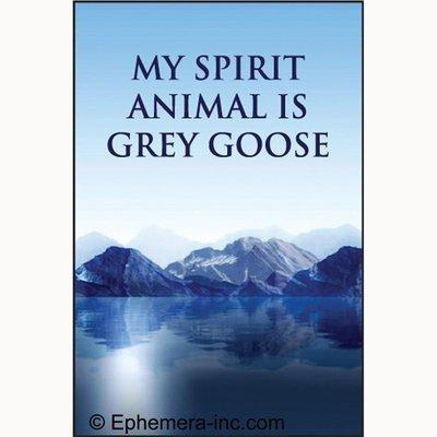 my-spirit-animal-is-grey-goose-rectangle-magnet