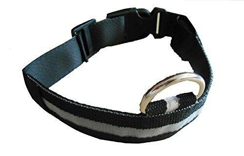 Neues LED (weiß) Hundehalsband, Halsband für Hunde S