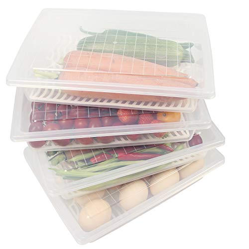 Yiautao Food Storage Container, Plastic Food Containers with Removable Drain Plate and Lid, Stackable Portable Freezer Storage Containers - Tray to Keep Fruits, Vegetables, Meat and More