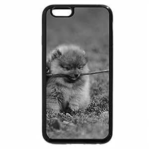 iPhone 6S Case, iPhone 6 Case (Black & White) - Pomeranian dogs