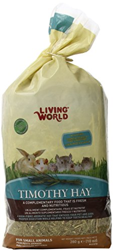 Living World Timothy Hay Pet Food, Medium, (Timothy Complete Chinchilla Food)