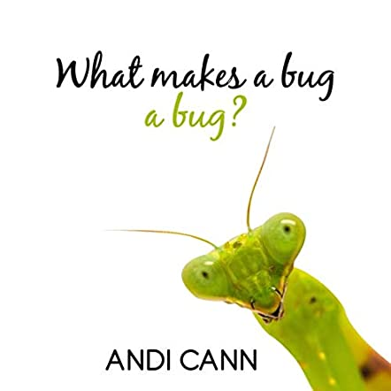 What Makes a Bug a Bug?