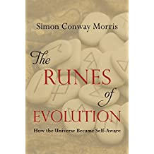 The Runes of Evolution: How the Universe became Self-Aware