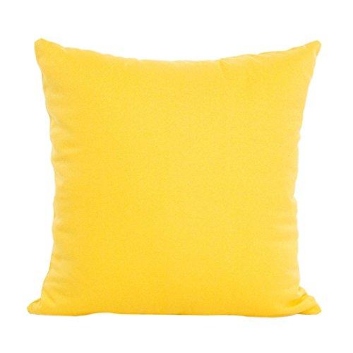 Hot Sale ! 45X45 CM Pillow