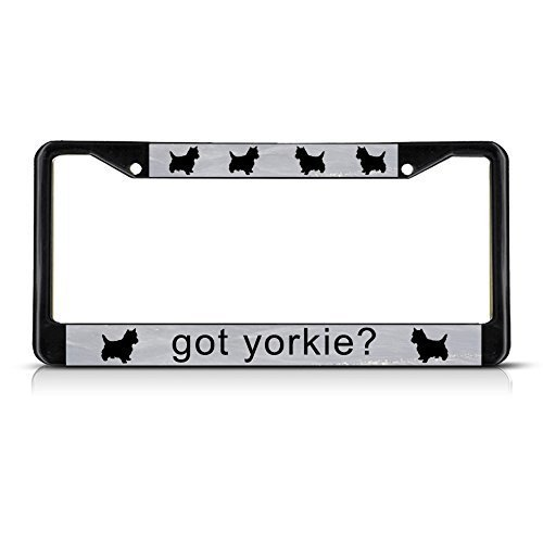 License Plate Frame Got Yorkie? Black Quote Auto Tag Holder Christmas Gift (Yorkie Got)