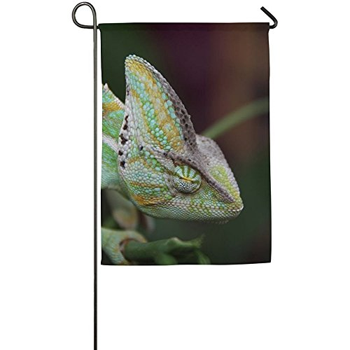 Cutadornsly Chameleon Garden Flag Indoor & Outdoor Decorative Flags for Parade Sports Game Family Party Wall Banner