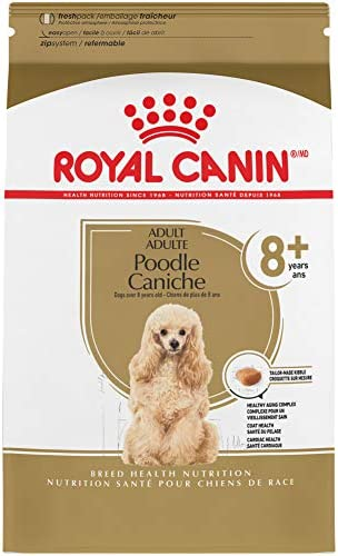 Royal Canin Breed Health Nutrition Poodle 8 Adult Dry Dog Food