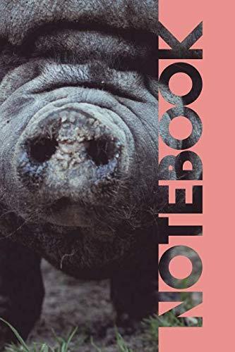 Notebook: Pot Belly Pig Convenient Composition Book