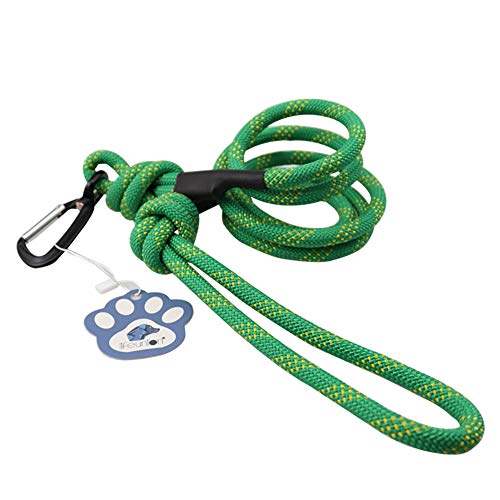 Lifeunion 6ft Dog Rope Leash Mountain Climbing Rope Training Dog Lead Leash with Carabiner Clip (Green)
