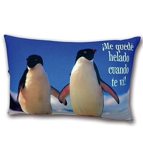 LInformal Cojín pingüinos Me quede Helado Cuando te Vi ...