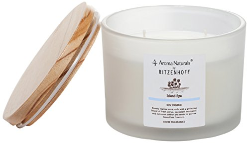 (Ritzenhoff Aroma Naturals Nature Glass Scented Candle, Blue, Opaque, 11x 11x 8.5cm)