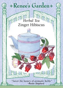 Hibiscus - Herbal Tea Seeds