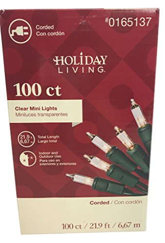 Clear Indoor Outdoor Christmas Mini String Lights 100 count Green Wire Christmas tree home trees parties (100 Green Mini Lights)