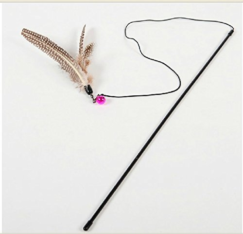 Set of 10 Feather Toys for Cats And Other Pets