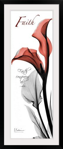 GreatBIGCanvas ''Calla Lily Faith X-Ray Photography'' by Albert Koetsier Photographic Print with black Frame, 16'' x 48'' by greatBIGcanvas
