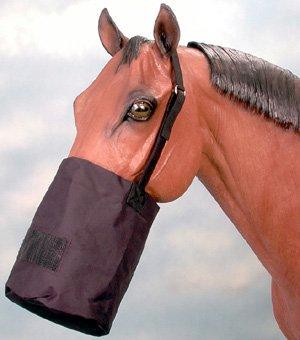 - Tough-1 Royal Blue Cordura Feed Bag Horse Tack 72-1818