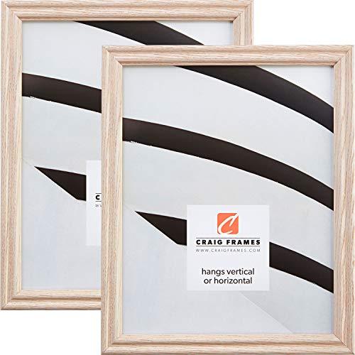 Craig Frames 200ASHWW 18 x 24 Inch Picture Frame, Whitewash, Set of 2 ()