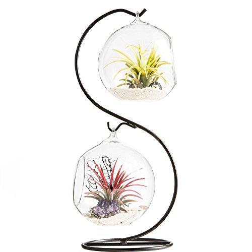 Mkono Glass Vase Plant Terrarium with Metal Stand, 2 Globe