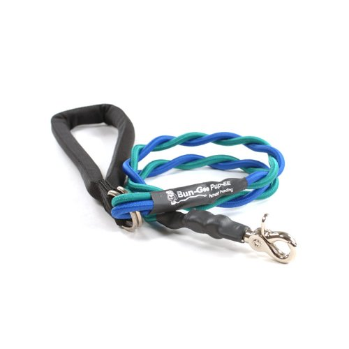 Bungee Pupee 4-Feet Double Pet Leash for Medium Sized Dogs, Teal/Blue