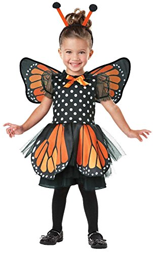 Seasons - Monarch Butterfly Infant/Toddler Costume - 2T-4T - Black/Orange (Butterfly Costume For Girl)