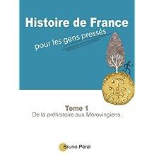 Histoire de France pour les gens pressés: De la préhistoire aux Mérovingiens. (French Edition)