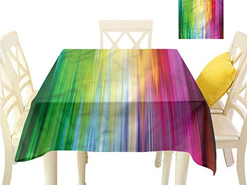 (WilliamsDecor Picnic Cloth Rainbow,Abstract Colors Pattern Printed Tablecloth W 36