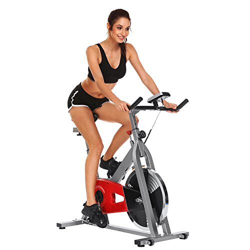 Cycle Exerciser, Stationary Exercise Bike Indoor Cycling Bike for Workout Fitness (Silver-Red) Utheing