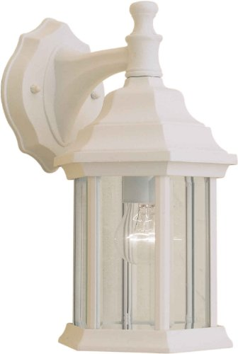 Front Finish (Forte Lighting 1715-01-13  Exterior Wall Light with Clear Beveled Glass  Shades, Matte White)