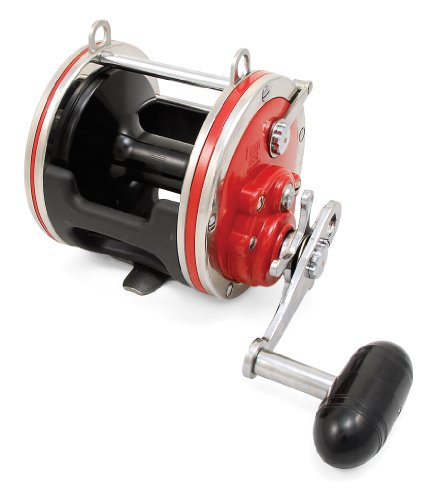 - Penn Special Senator 114H2LW Fishing Reel, Wide Spool